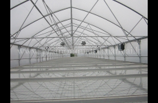 stocklot - Commercial greenhouse