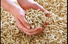 TradeGuide24.com - Wood pellets European Standard