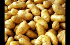 stocklot - POTATOES