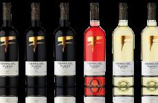 stocklot - Chilean wines