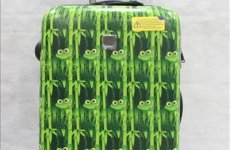 stocklot - Printed Pc Luggage
