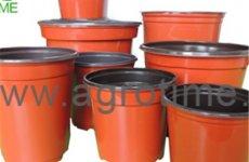 stocklot - Plant Pot