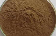 stocklot - Shitake Mushroom Extract