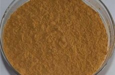 stocklot - Chinese Angelica Extract