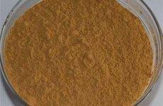 stocklot - Motherwort Extract